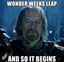 wonder-weeks-leap-and-so-it-begins
